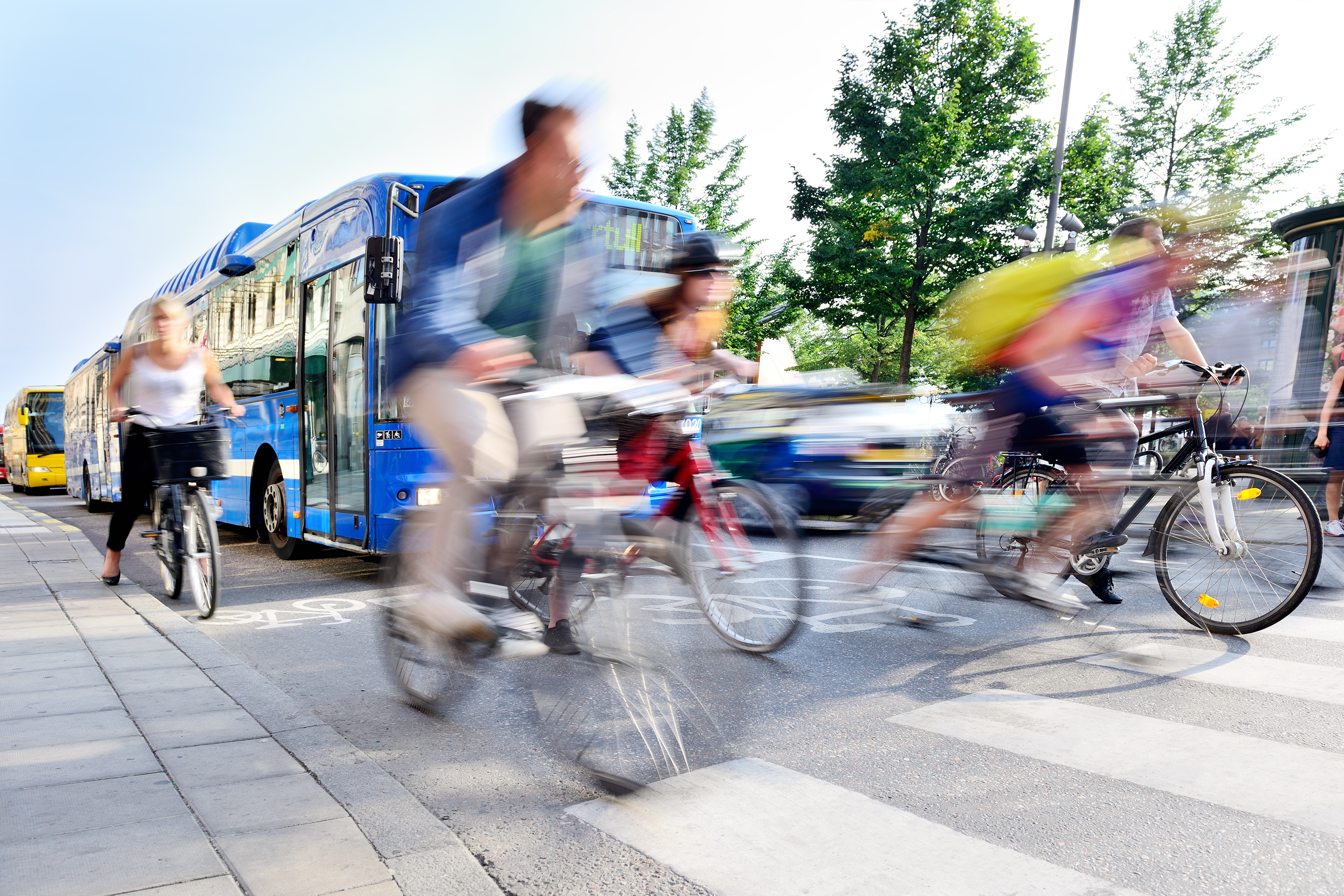 bikes and buses